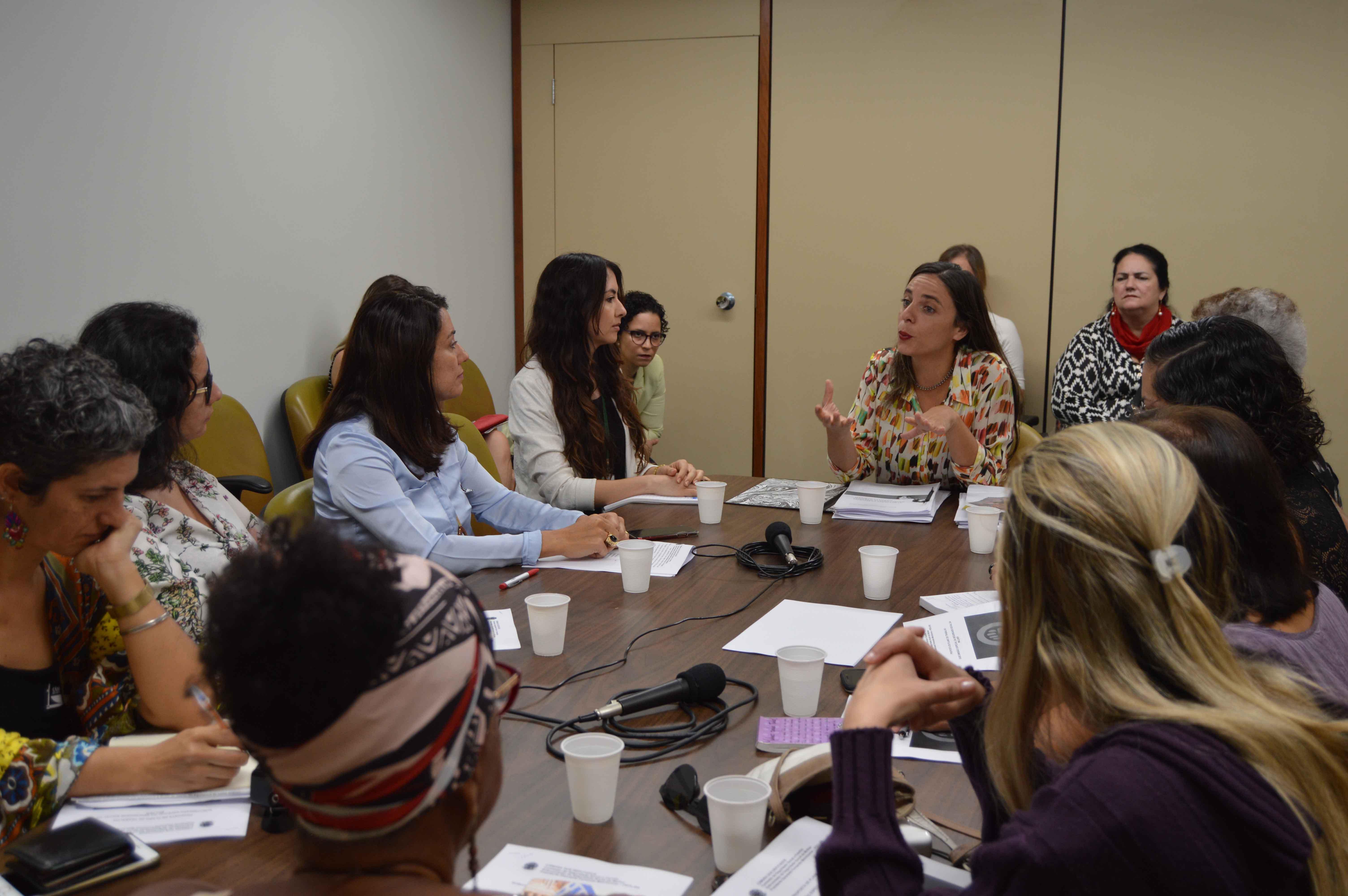 Fernanda Melchionna inicia os trabalhos da subcomissão especial da seguridade social da mulher