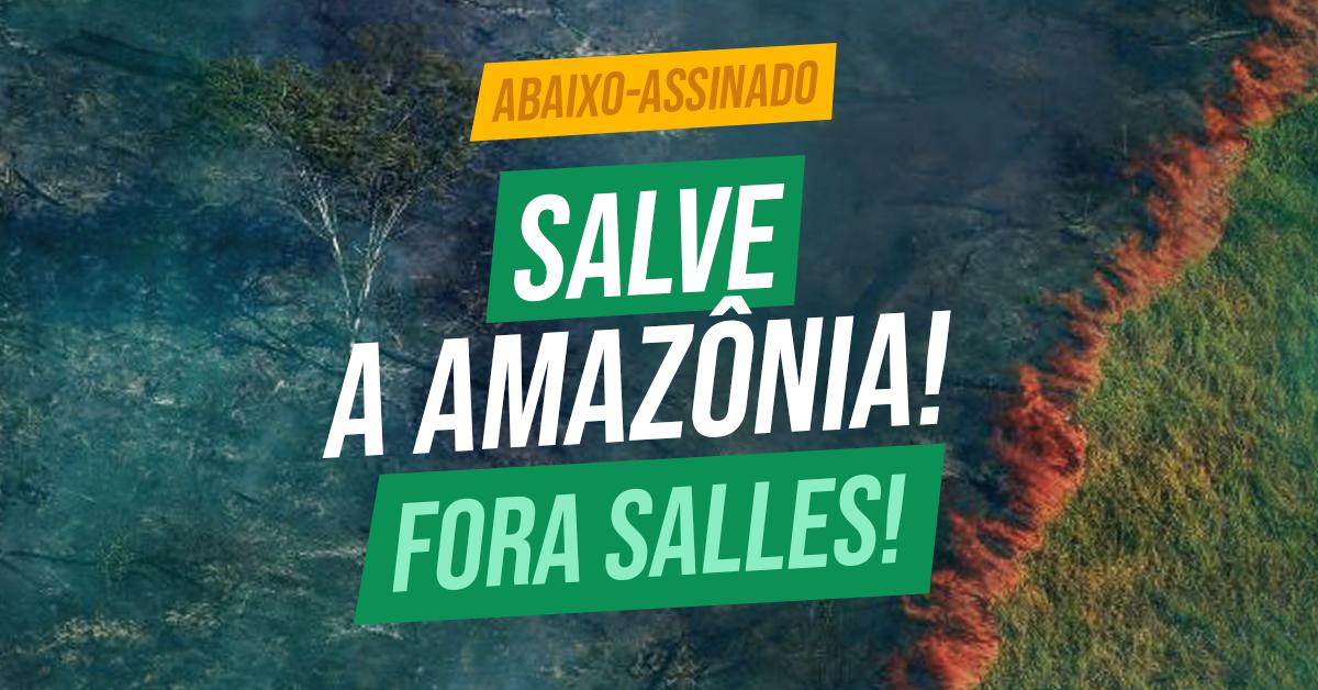 ABAIXO-ASSINADO | SALVE A AMAZÔNIA!