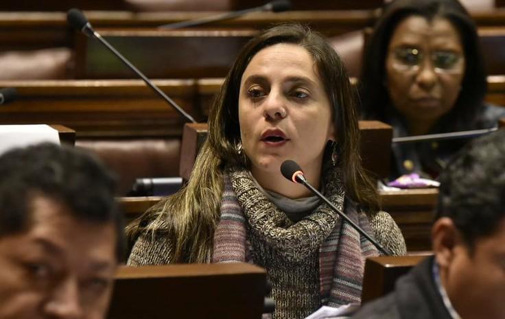 Dep. Fernanda aprova moção de repúdio contra Bolsonaro no Parlamento do Mercosul