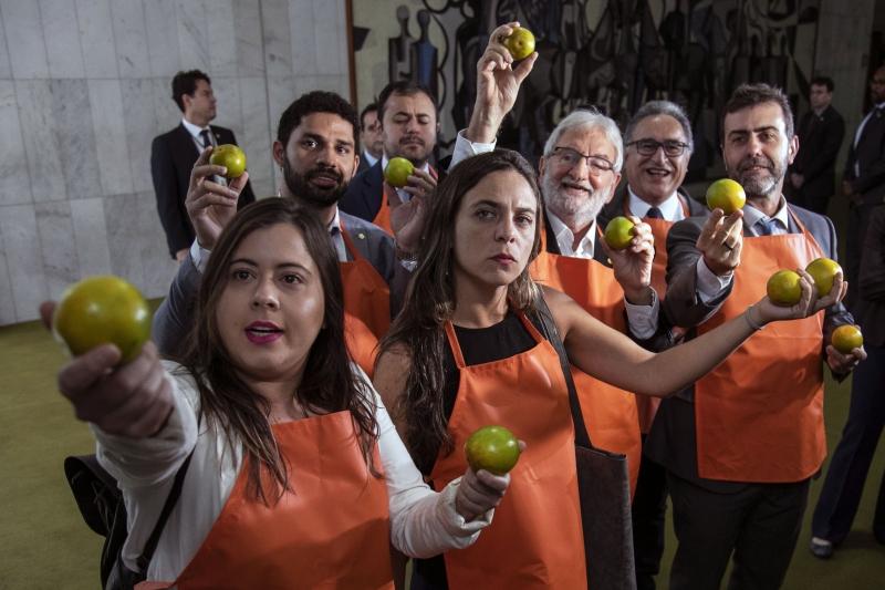O PSOL na Câmara dos Deputados