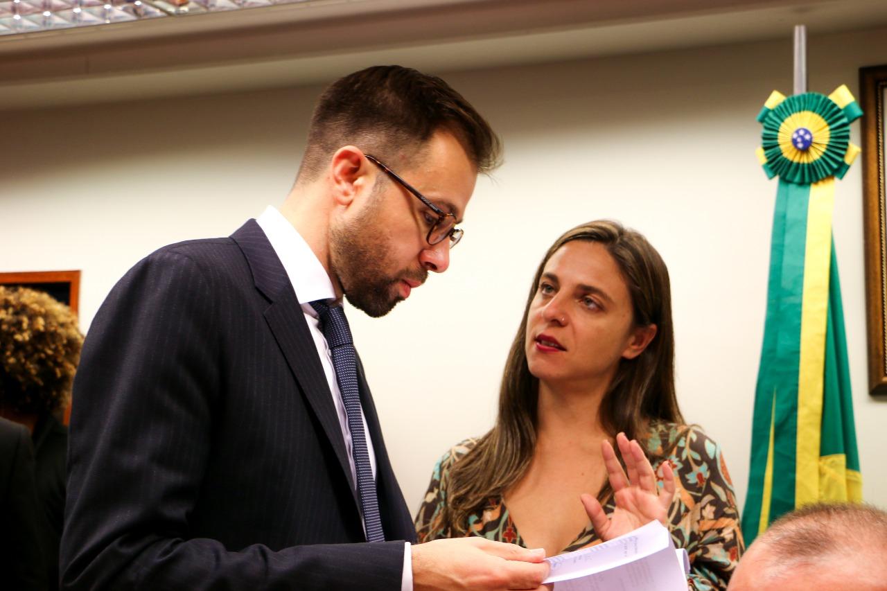 Fernanda Melchionna e Freixo denunciam Brasil na ONU e pedem por fiscalização do desmantelamento da proteção ambiental