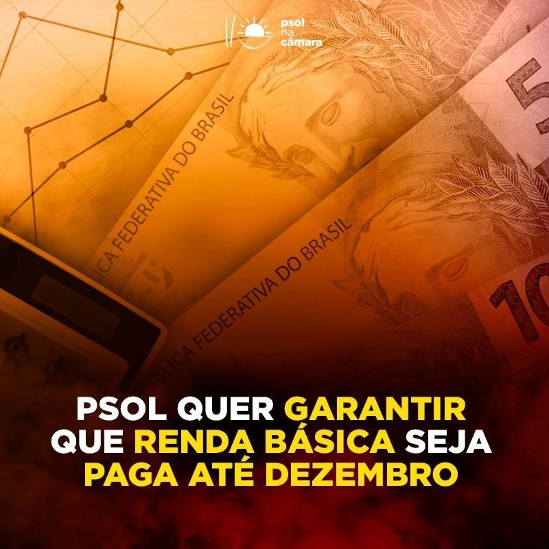 PSOL propõe a prorrogação do auxílio emergencial até dezembro de 2020
