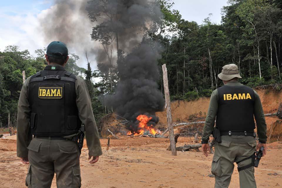 Relatora da PFC pede ao MPF recondução dos coordenadores de fiscalização exonerados do Ibama