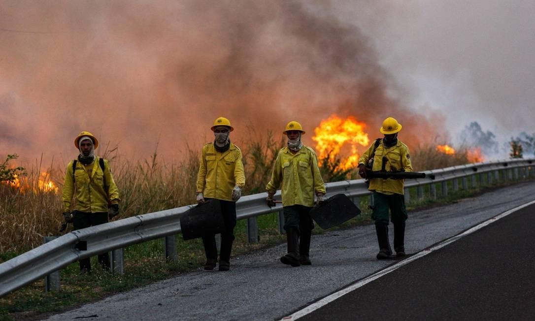 PSOL quer que governo decrete Estado de Calamidade e envie Força Nacional ao bioma Pantanal, que já perdeu 20% de sua região em incêndios