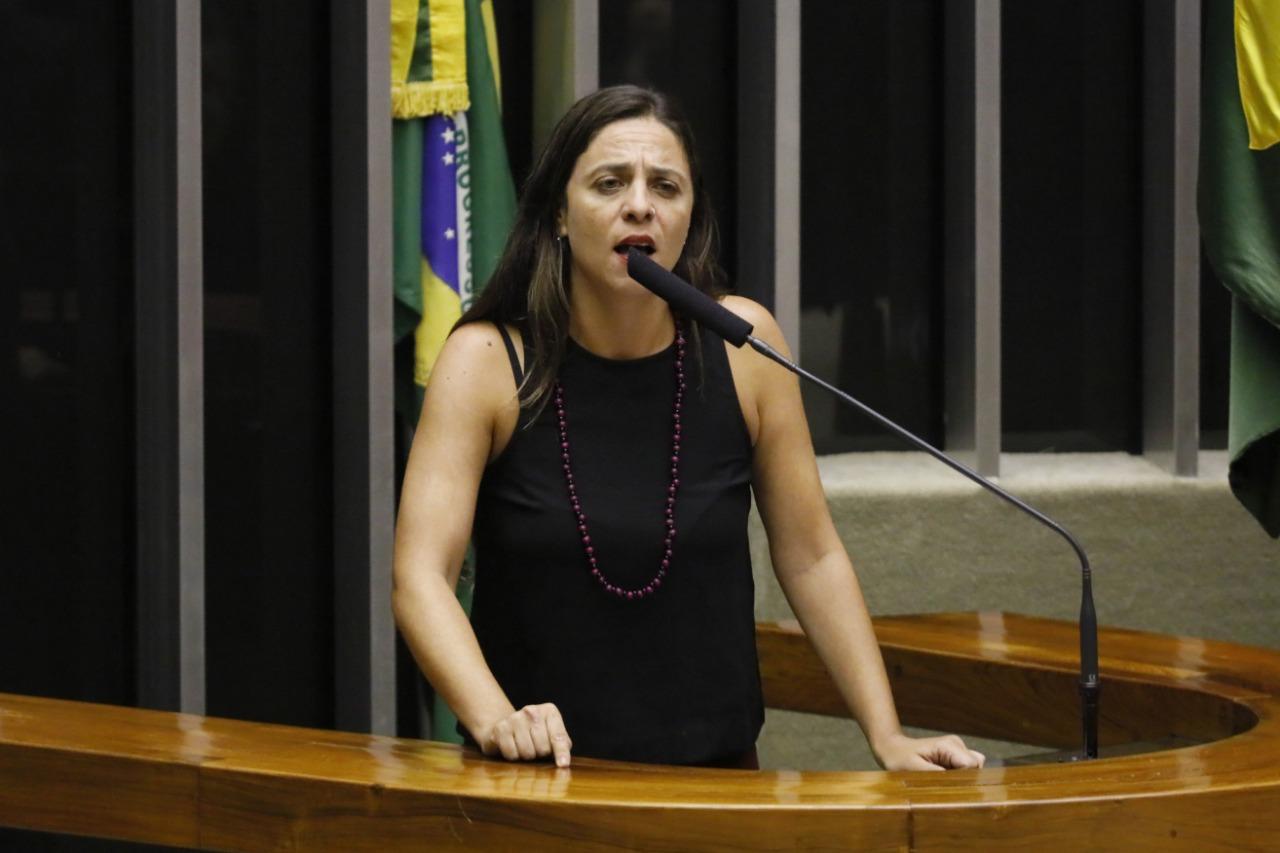 Fernanda anuncia candidatura à Presidência da Comissão de Constituição e Justiça da Câmara