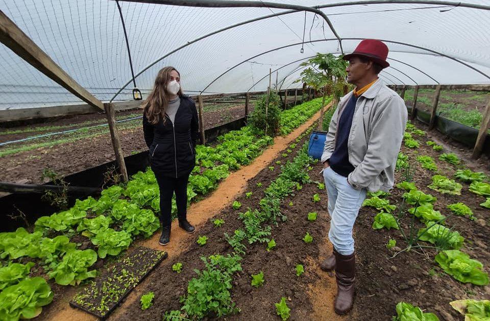 Deputada Fernanda Melchionna reúne com agricultores de Candiota